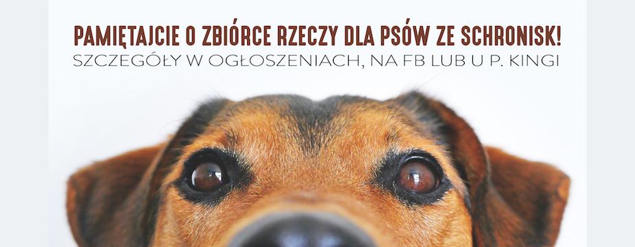 Psy - zbiórka