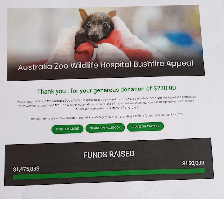 Zbiórka dla zwierząt w Australii